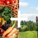 Nutrición-y-Marcha-Nórdica